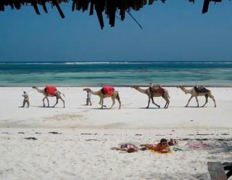 viajar a la playa en kenia