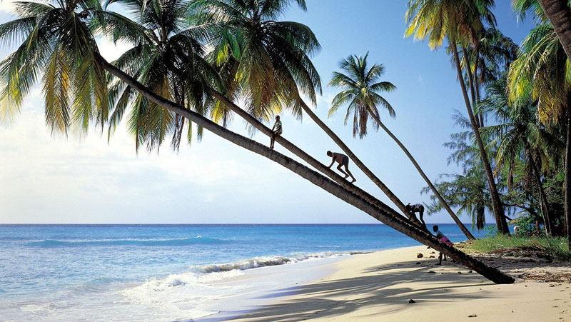 Cuál Es La Mejor época Para Viajar A Barbados Ver Cuando Ir