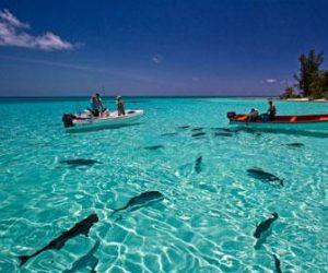 cuando ir de vacaciones a las seychelles