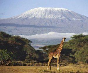 cuando viajar a tanzania