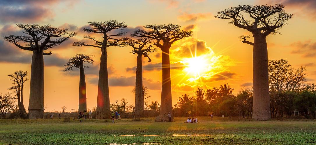 cual es la mejor epoca para viajar a Madagascar