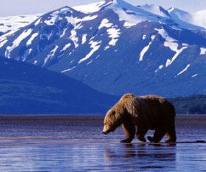 clima en Alaska
