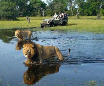 cuando viajar al delta del okavango