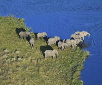 mejor epoca para ir al delta del okavango